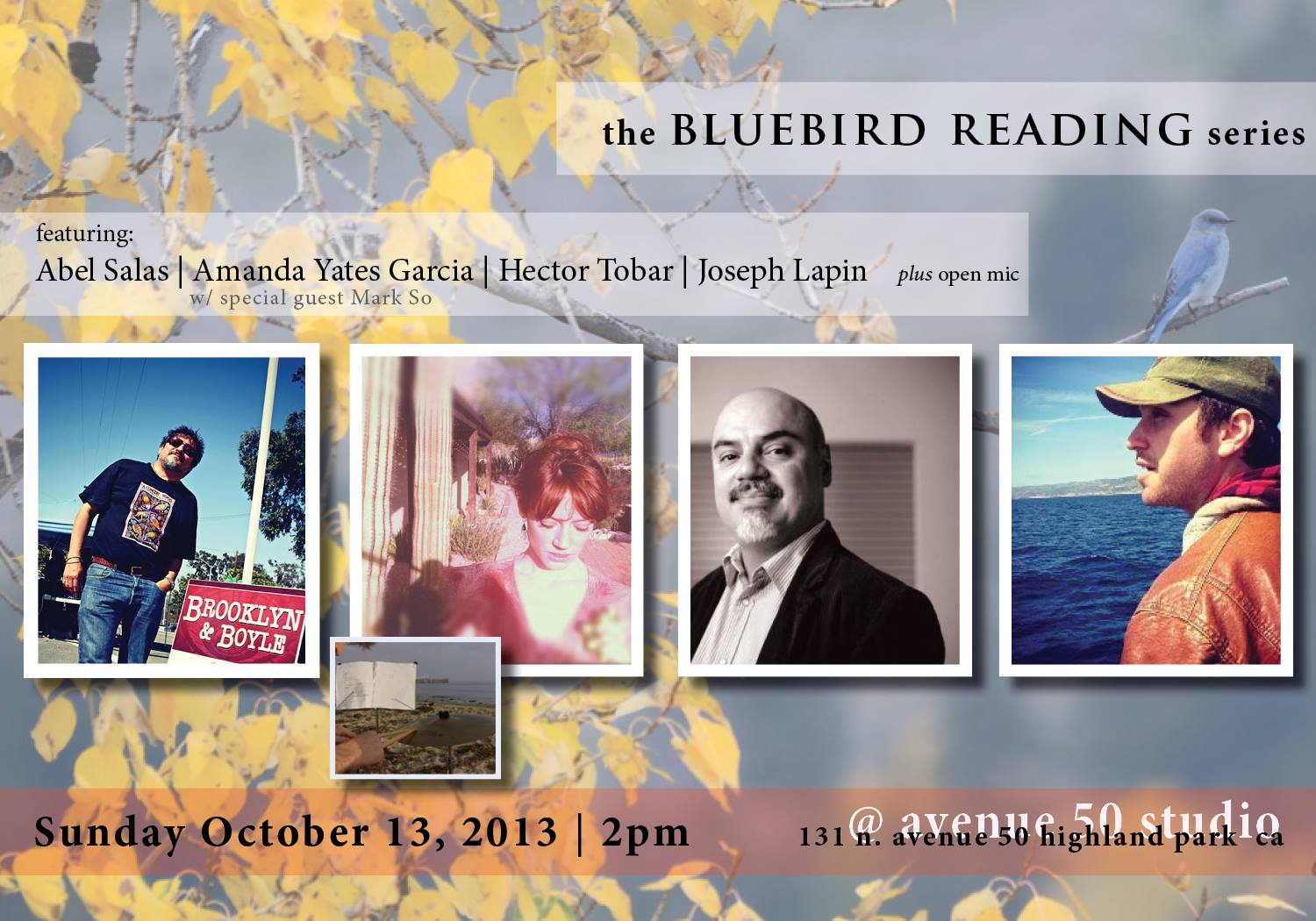 Bluebird-Flyer-2013Oct13